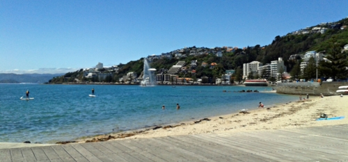An Oriental Bay Monday